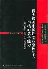 做大做强中国保险业整体实力与核心竞争能力中国保险发展报告(2004)