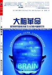 大脑革命(试读本)