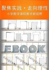 聚焦实践·走向理性:小学数学课程教学新视野