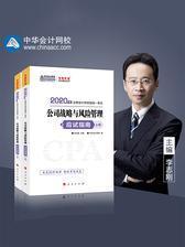 注册会计师2020考试教材辅导  中华会计网校 梦想成真 2020年注册会计师应试指南(上下册)-公司战略与风险管理