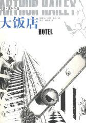 大饭店:阿瑟·黑利作品(试读本)