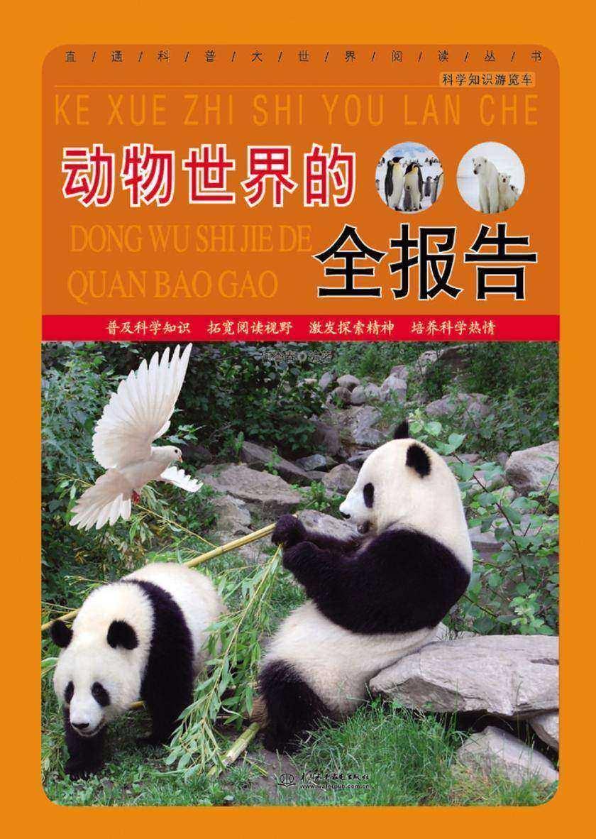 动物世界的全报告