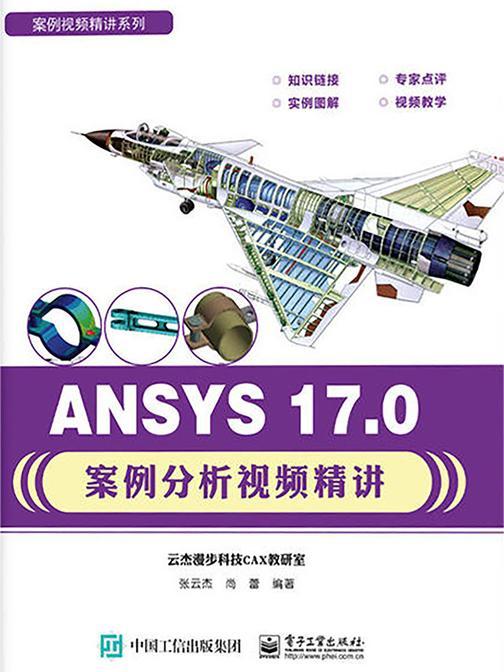 ANSYS 17.0案例分析视频精讲