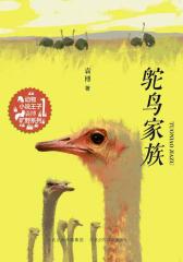 鸵鸟家族(动物小说王子袁博旷野系列)