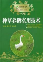 种草养鹅实用技术