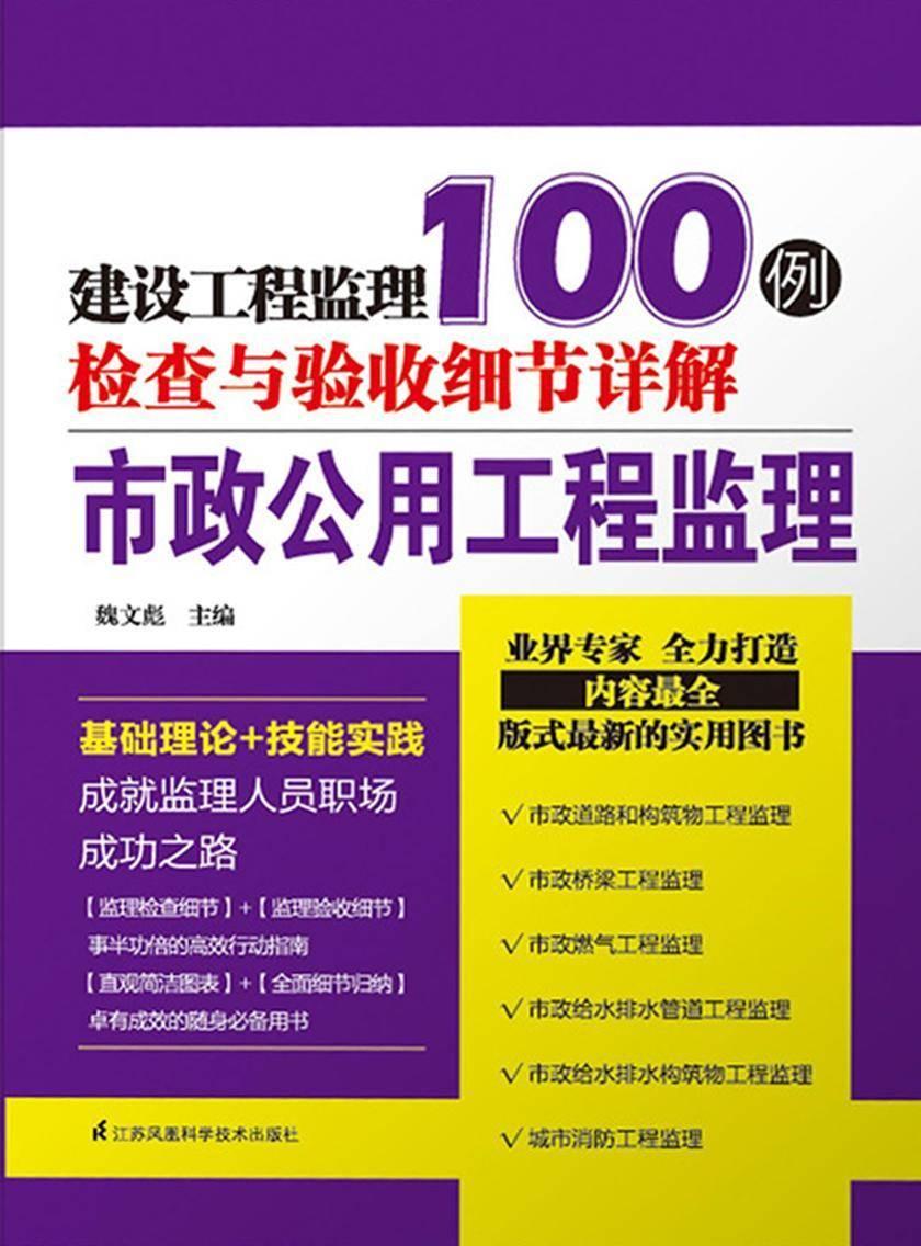 市政公用工程监理(建设工程监理检查与验收细节详解100例)