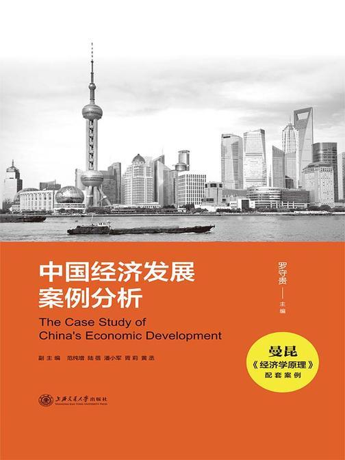 中国经济发展案例分析