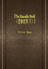 The Miserable World (悲惨世界·下)