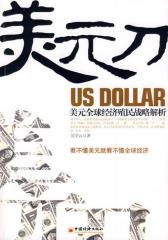 美元刀:美元全球经济殖民战略解析(试读本)