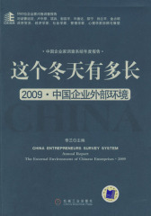 这个冬天有多长2009·中国企业外部环境(试读本)