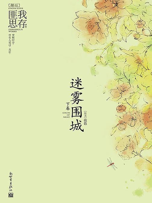 迷雾围城(下)(原名:夜色)