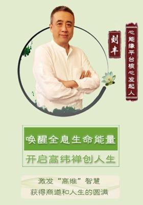 刘丰教授:禅修养心课(套装共21册)