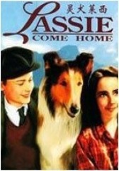 灵犬莱西 1943年版(影视)