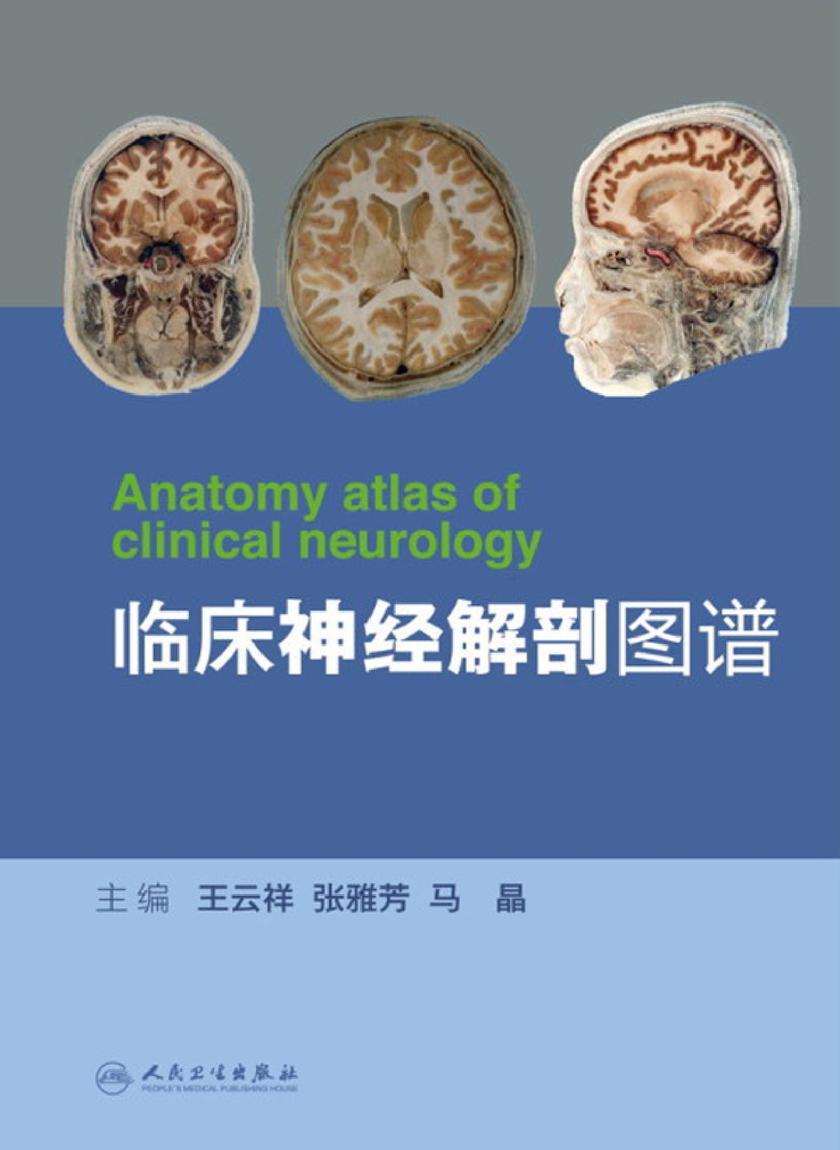 临床神经解剖图谱