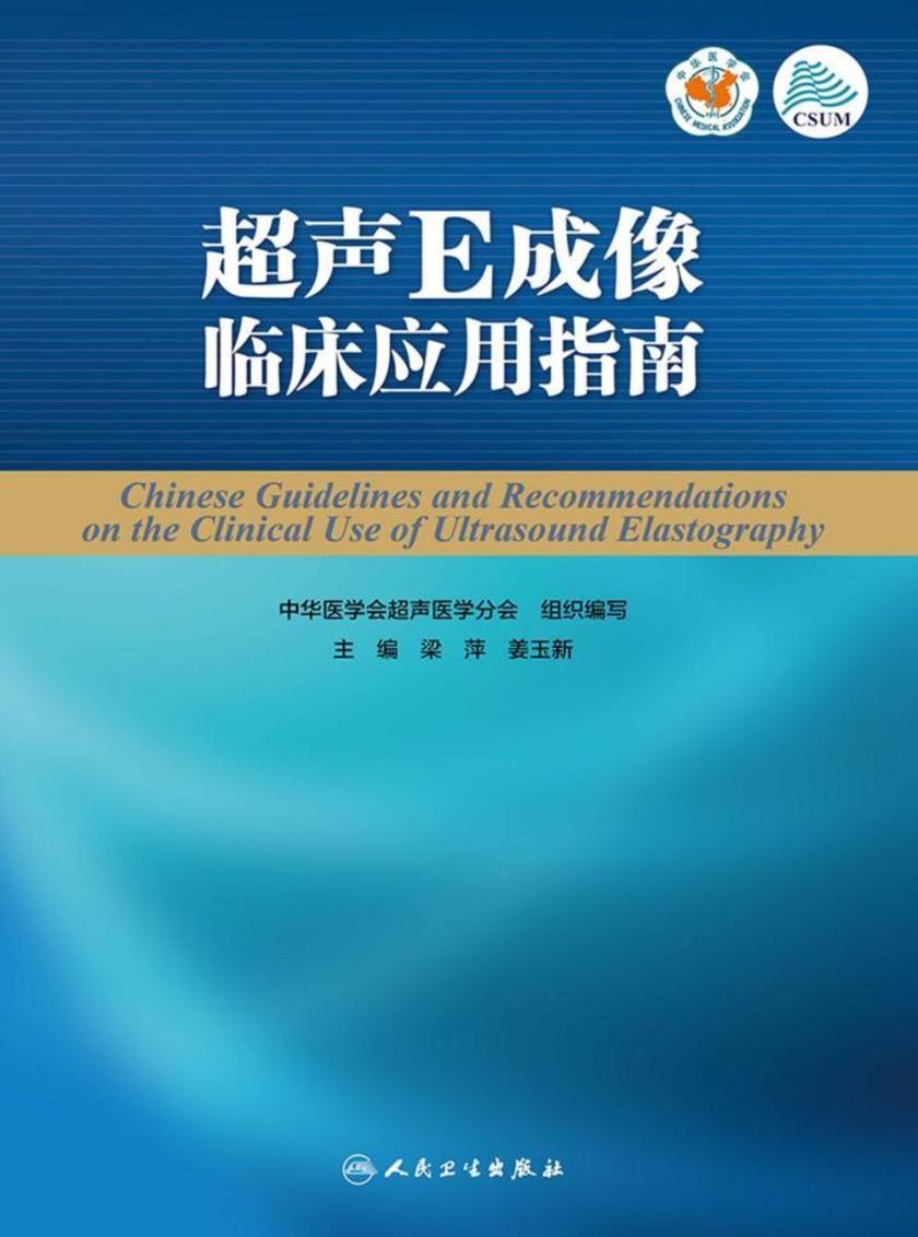 超声E成像临床应用指南
