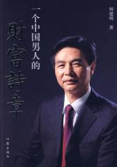 一个中国男人的财富诗章(试读本)