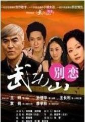 武功山别恋(影视)