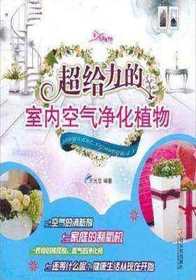 超给力的室内空气净化植物