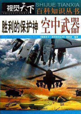 胜利的保护神:空中武器(仅适用PC阅读)