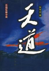 长篇反腐小说:天道(试读本)