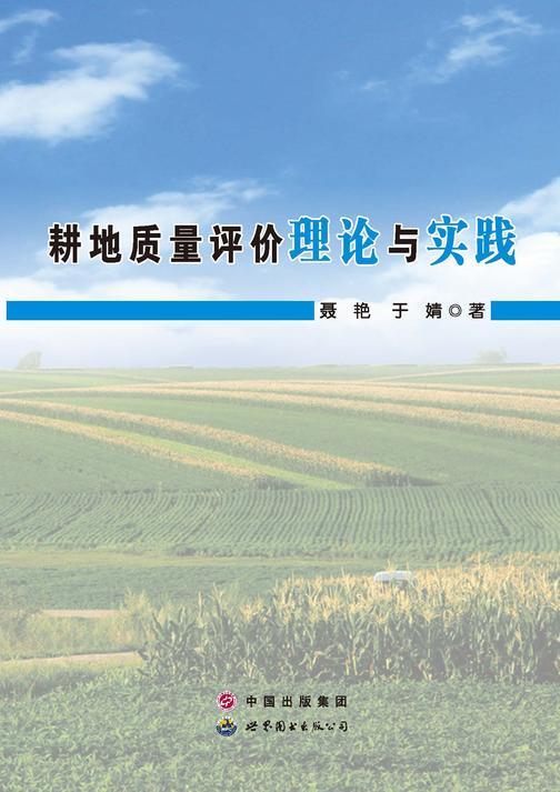 耕地质量评价理论与实践