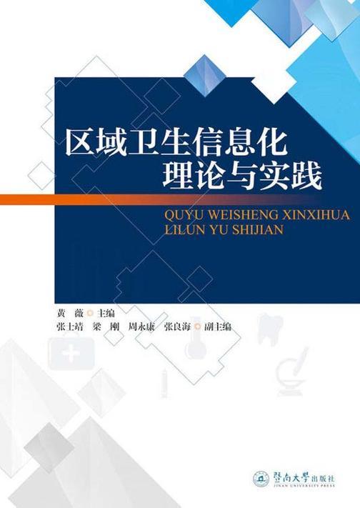 区域卫生信息化理论与实践
