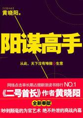 阳谋高手(第三部分)(试读本)