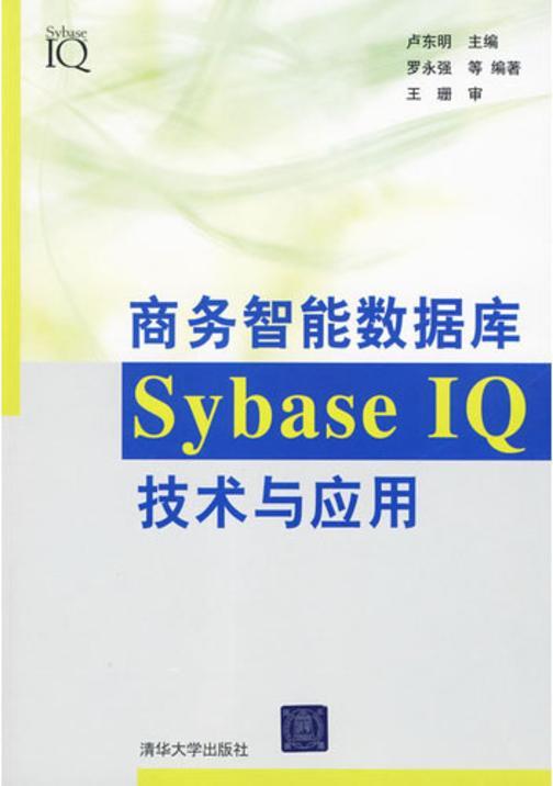 商务智能数据库SybaseIQ技术与应用