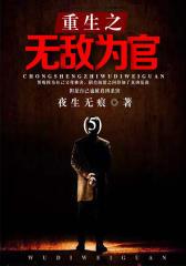重生之无敌为官(5)