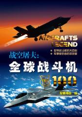 战空屠夫:全球战斗机100(试读本)(仅适用PC阅读)
