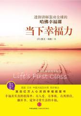生命的觉知课(2):当下幸福力