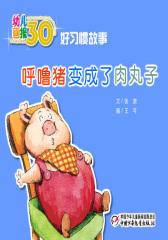 幼儿画报30年精华典藏﹒(呼噜猪变成了肉丸子)(多媒体电子书)(仅适用PC阅读)