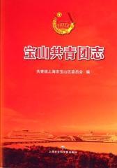 宝山共青团志