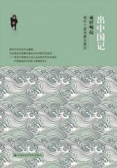 出中国记:乘桴崛起——海外十国考察及策论