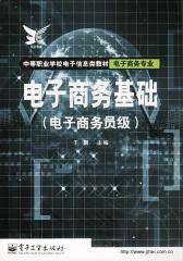 电子商务基础(仅适用PC阅读)