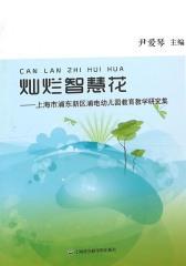 灿烂智慧花:上海市浦东新区浦电幼儿园教育教学研究集