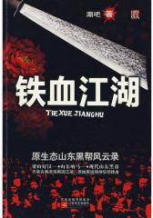 铁血江湖:原生态山东黑帮风云录(试读本)