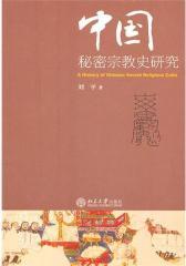 中国秘密宗教史研究