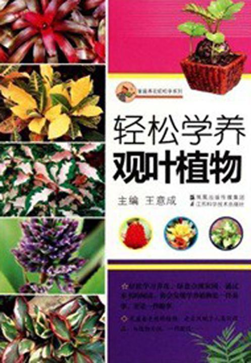 轻松学养观叶植物