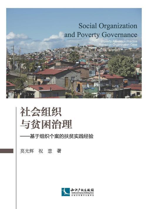 社会组织与贫困治理:基于组织个案的扶贫实践经验