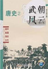 武朝风云·唐史②(仅适用PC阅读)