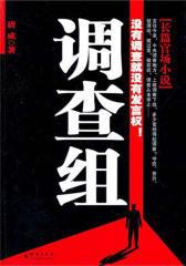 官场小说:调查组