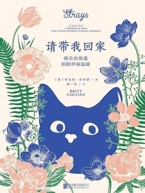 请带我回家(人与流浪猫之间最简单、最真实的情感与爱的治愈力量,爱猫之人不可错过的温情之作)