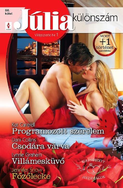 Programozott szerelem (Elrendezett házasságok 3.)