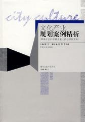 文化产业规划案例精析(国家社会科学基金重大招标项目资助)