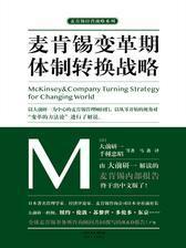 麦肯锡变革期体制转换战略