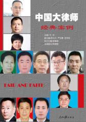 中国大律师经典案例