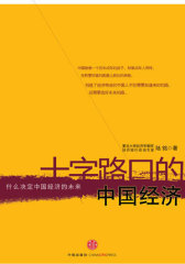 十字路口的中国经济(试读本)