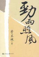 劲雨煦风(试读本)