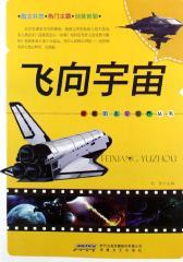 神秘的太空世界丛书:飞向宇宙